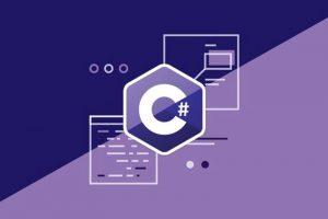 c sharp programer